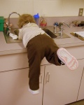 Handwashing Anna Monroe