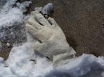 Latex Glove in Snow Renee Rendler-Kaplan