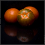 albaflickr heirloom red tomato