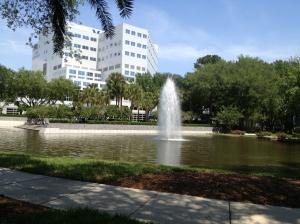 Mayo Clinic Florida